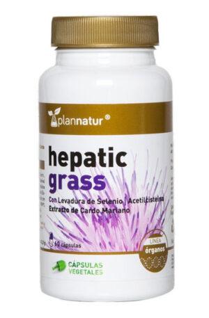 Hepatic Grass