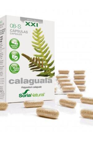 Calaguala Soria Natural