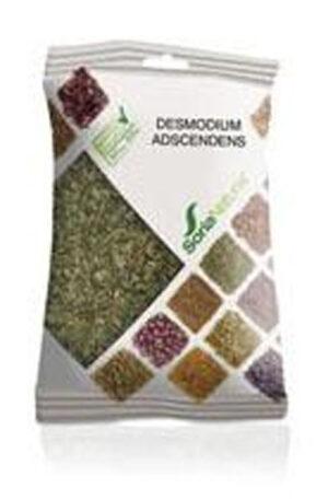 DESMODIUM ADSCENDENS BOSSA Soria Natural