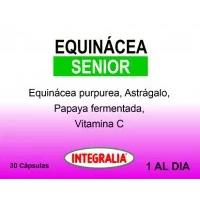 Equinacea Senior