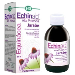 Echinaid Xarop